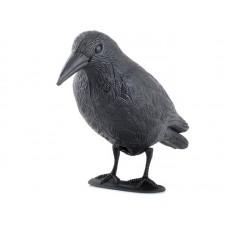 Отпугиватель голубей ( муляж вороны )